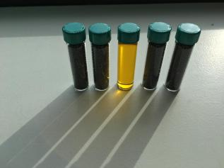 vials of canola